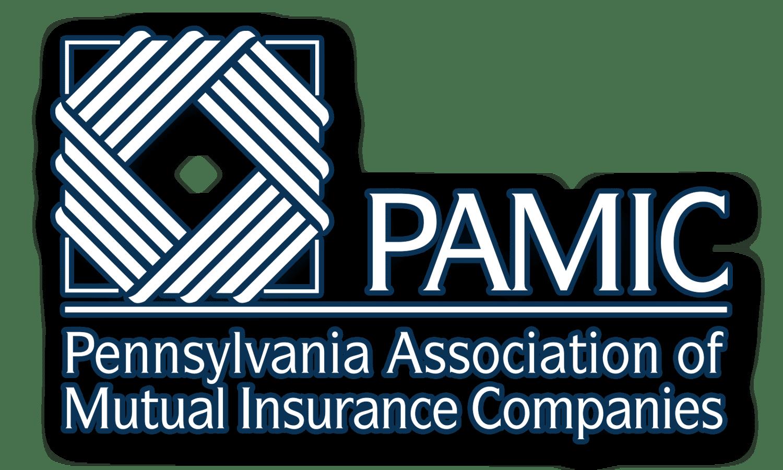 PAMIC Logo